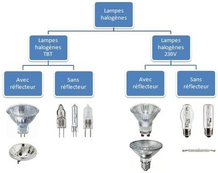 Performances des lampes à halogène | Actu des lampes et des ampoules | Scoop.it