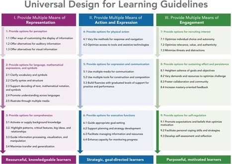 Education as a Force for Equality | Universal Design for Learning and Curriculum | Scoop.it
