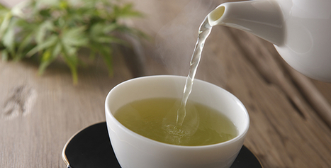 5 Ways To Drink Green Tea For Weight Loss | Weight Loss News | Scoop.it