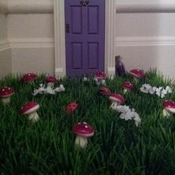 Indoor Plant Care | Artificial Outdoor Plants | Scoop.it