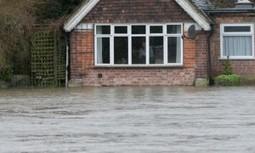 Flood risk warning on paved gardens | Gardening | Scoop.it