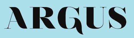 Revue Argus - Naviguer en eaux troubles : le développement d'outils pour les jeux en ligne en bibliothèque | bib on web | Scoop.it