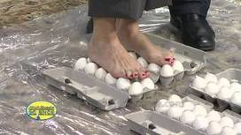 UVioO - Walking on Eggs - Cool Science Experiment | Interesting | Scoop.it