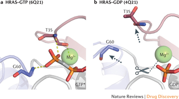 Direct small-molecule inhibitors of KRAS: from structural insights to mechanism-based design | Melanoma BRAF Inhibitors Review | Scoop.it