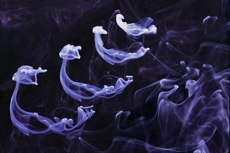 Stefan Engström photography | Flow Visualization | Scoop.it