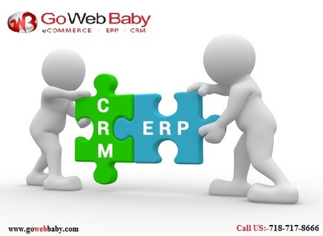 Different Roles Accomplished by ERP and CRM in Business | Gowebbaby's Prestigious Web Design | Scoop.it