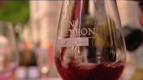 Les vins de l'Aveyron ont-ils un avenir ? | Verres de Contact | Scoop.it