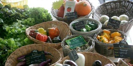 Pourquoi le Sud-Ouest est la première région à consommer les produits locaux | Agriculture en Dordogne | Scoop.it