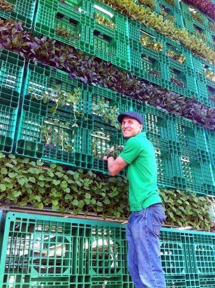 Australia Plants World's Largest Pallet Garden   Earth Citizens Perspective   Scoop.it