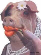 Hyperinflationary Depression 2012 - 2014: Mainstream Media Keeps Putting Lipstick on Pig Economy | Greg Hunter's USAWatchdog | Gold and What Moves it. | Scoop.it