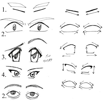 Eye Basics | Drawing and Painting Tutorials | Scoop.it