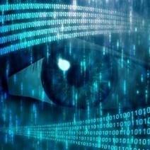 MiniDuke : une campagne mondiale de cyberespionnage utilisant Twitter   IT governance   Scoop.it