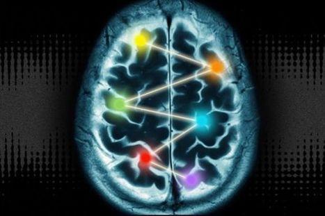 脳10%神話を未だに信じてるみなさまの必読 | ニコニコニュース | 七生報國 | Scoop.it