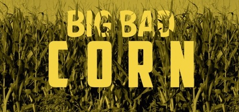 Big Bad Corn | Did You Know #Facts | New Ideas ☼ Innovative Thinking | Scoop.it