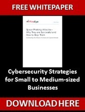 FireEye - Cybersecurity Strategies for Small to Medium-sized Businesses | it security | Scoop.it