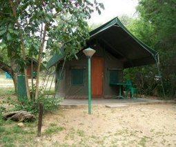 3 day budget Kruger National Park safari, South Africa | Kruger & African Wildlife | Scoop.it