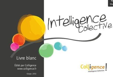 Livre blanc de l'intelligence collective (1er cru 2013) et gratuit | Coaching de l'Intelligence et de la conscience collective | Scoop.it