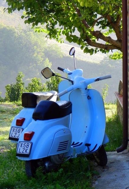 Villa Moltini – vorstelijk vakantieverblijf in Le Marche | Italy Traveller | Scoop.it
