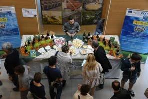 Bacco e Minerva, concorso enologico per istituti agrari - Green Planner | Fondazione Mach | Scoop.it
