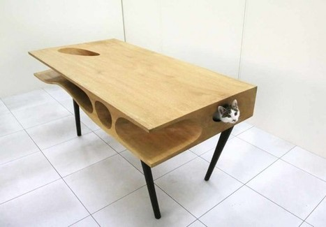 CATable: The table for any cat's curiosity - The Priceless Guide | Priceless | Scoop.it
