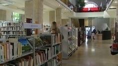 Dijon instaure la gratuité des bibliothèques municipales - France 3 Bourgogne   La communication des bibliothèques   Scoop.it
