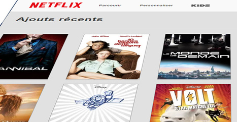 Netflix bloquerait des VPN et proxys étrangers | Libertés Numériques | Scoop.it