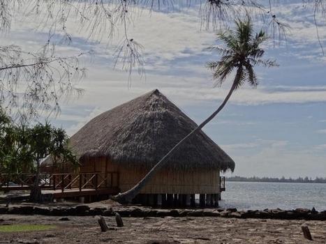 Histoire et culture polynésienne : il était une fois nos « fare » traditionnels   Tahiti Infos   Kiosque du monde : Océanie   Scoop.it