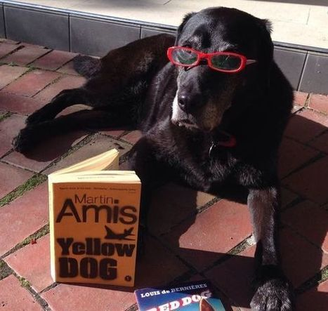 Gus reads Martin Amis #gusreads #growlingwithgus | What is a teacher librarian? | Scoop.it