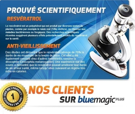 Blue Magic Plus | Get Slim Very Fast Hurry Up | Scoop.it