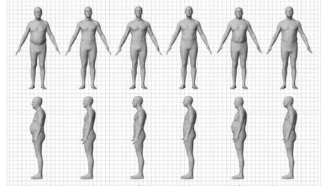 The big problem with BMI: Different bodies with the same measure | Physical Education - The Nutrition Component | Scoop.it