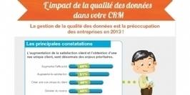 Infographie : L'impact de la qualité des données dans votre CRM | Lead gen - marketing B2B | Scoop.it