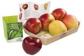 Carlo Petrini è campione della Terra 2013. L'Onu premia il fondatore di Slow Food   Ecoarea   Scoop.it