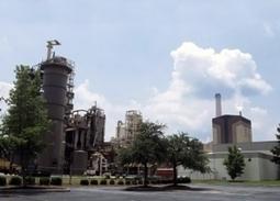 FGRID - Tales from the Future. Παροχή ολοκληρωμένων υπηρεσιών πράσινης επιχειρηματικότητας. | Biomass 2014 | Scoop.it