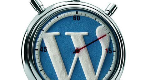 Un site WordPress, ça prend du temps | Mes ressources personnelles | Scoop.it