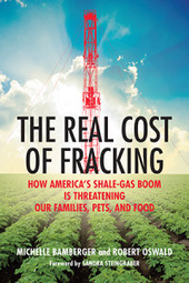 The Real Cost of Fracking: How America's Shale Gas Boom Is Threatening Our Families, Pets, and Food | Peer2Politics | Scoop.it
