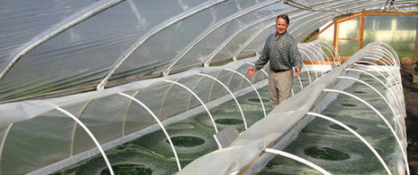 Spirulina microfarm/testbed launched in Northwest US | Sustain Our Earth | Scoop.it