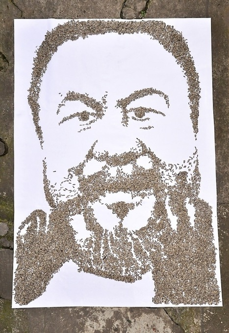 Sunflower Seed Portrait of Ai Weiwei | BASIC VOWELS | Scoop.it