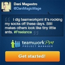 Just a Reminder as to Why I love TeamworkPM so much - Dani Magestro | All About Teamwork PM | Scoop.it