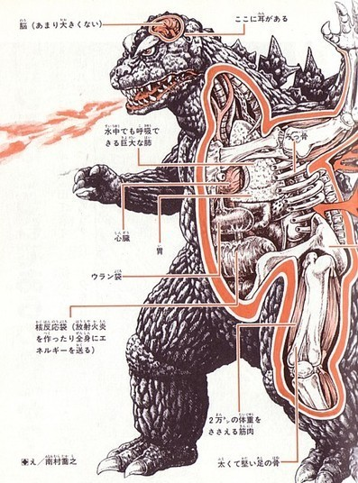 The science of Godzilla, 2010 | Movies | Scoop.it