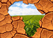 Middle East's Investments in African Farmlands Are Rooted in Food Security Fears - Knowledge@Wharton | Large Scale Farming | Scoop.it