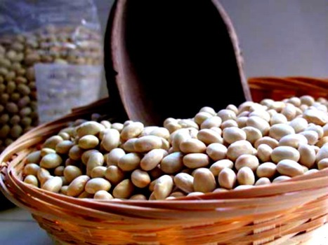 Heirloom & Nearly Extinct, the Italian Solfino Bean   Le Marche and Food   Scoop.it