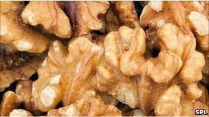 BBC Mundo - Noticias - La nuez, el alimento más nutritivo y saludable | Hedonismo low cost - Gastronomía | Scoop.it