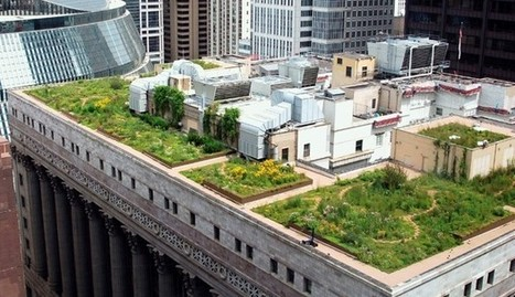 37 Benefits of Green Roofs | PowerHouse Growers | Lists | PowerHouse Growers | Urban Agriculture and Design | Scoop.it