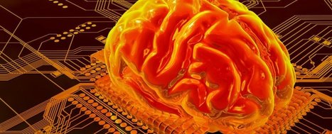 An electronic memory cell has been created that mimics the human brain | The Asymptotic Leap | Scoop.it