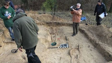 Dig this: Badger unearths medieval grave   News You Can Use - NO PINKSLIME   Scoop.it
