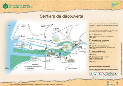 Maison de l'Estuaire : le site du gestionnaire de la Réserve Naturelle Nationale de l'Estuaire de la Seine | Valorisons l'Estuaire de la Seine. | Scoop.it