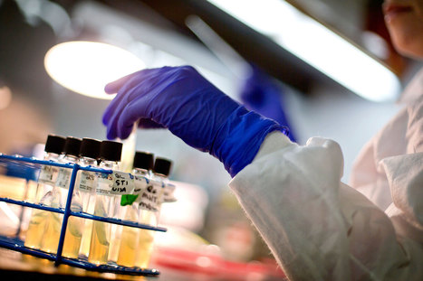 How We'll Tackle Diseases That Are Becoming Untreatable | Media Cultures: Microbiology in the news | Scoop.it