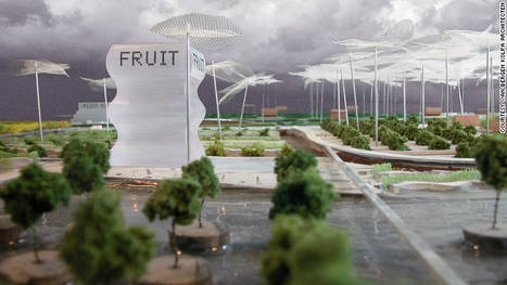 Farm in the city could be supermarket of the future | green streets | Scoop.it