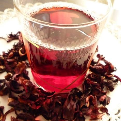 JAMAICA (Hibiscus sabdariffa)   ECOLOGIA Y SALUD: Plantas aromáticas y medicinales.   Scoop.it