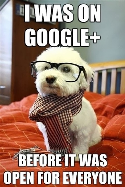 New on #GooglePlus?  Links for getting started! | Educatief Internet | Scoop.it